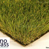 rhino-grass-long-horn7